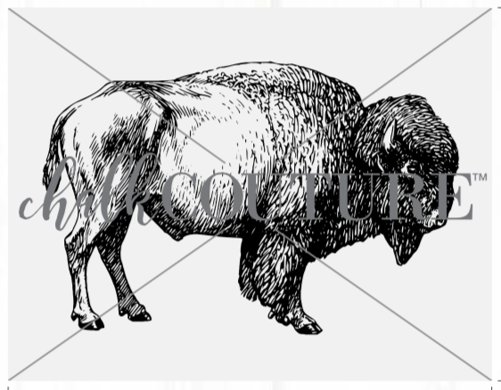 Buffalo Chalk Transfer